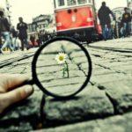 """""""Trasformare la Sofferenza"""": Spunti per il Cambiamento!"""
